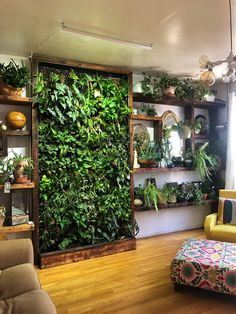 Vertical Gardens Are the Perfect Small Space Solution for Plant Lovers is part of Vertical garden wall - With a bare wall or fence you can easily grow plants, herbs, and vegetables Room With Plants, House Plants Decor, Plant Rooms, Plants On Walls, Garden Wall Decorations, Christmas Decorations, Vertical Garden Wall, Vertical Planter, Decoration Plante