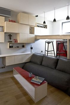 Micro-Apartment-Paris. 130 sq ft split level. The side of the bed does double duty as a sofa and recedes under the raised kitchen floor when not in use.