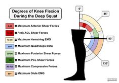 Is It Safe To Squat Deep? - Physio Network