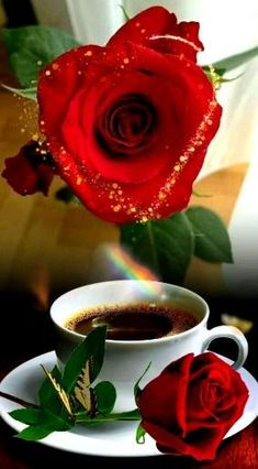 Good Morning Handsome Quotes, Good Morning Beautiful Pictures, Beautiful Morning Messages, Good Morning Images Flowers, Good Morning Roses, Good Morning Gif, Cute Good Night, Good Night Sweet Dreams, Beautiful Rose Flowers