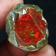 74.2CT Natural Ethiopian Black Chocolate Opal Facet Rough Specimen YQO1144