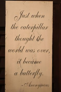 caterpillar thought the world was over