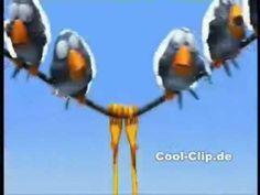 Die coolsten Vögel auf der Stromleitung - YouTube