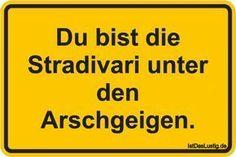 Du bist die Stradivari unter den Arschgeigen. ... gefunden auf https://www.istdaslustig.de/spruch/1803 #lustig #sprüche #fun #spass