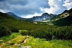 Saua Bucurei  - Hunedoara ♦ Romania #romania Beautiful Places In The World, Wonderful Places, Famous Castles, Scenery, Wildlife, Mountains, Country, City, Amazing
