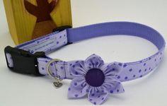 Unique Pet Adjustable Collar with Attachable Flower Pet by HaleysPetBoutique