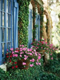 Dress up a side yard with beautiful blooming containers. More smart side-yard solutions. Beautiful Gardens, Beautiful Flowers, Happy Flowers, House Beautiful, Pink Flowers, Pot Jardin, Garden Windows, Cottage Windows, Window Boxes