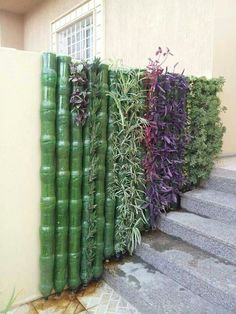 Clever Plastic Bottle Vertical Garden Ideas - FarmFoodFamily - Green wall m. - Clever Plastic Bottle Vertical Garden Ideas – FarmFoodFamily – Green wall m… - Plastic Bottle Planter, Reuse Plastic Bottles, Plastic Bottle House, Plastic Bottle Greenhouse, Plastic Bottle Flowers, Plastic Bottle Crafts, Recycled Bottles, Vertical Garden Design, Vertical Gardens