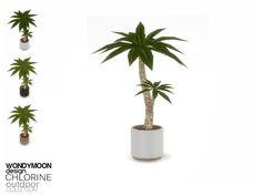 wondymoon's Chlorine Plant