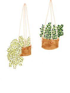 indoorplantslarge_0005.jpg