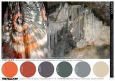 AH17/18 - COLOUR - All sectors Complete analytical colour palettes with key colour selections for each trend…  - TRENDZOOM: Fashion Trend & Colour Forecast A/W 17-18 - Tendances (#692486)