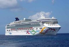 Latest Norwegian Pearl incident is concerning.