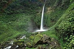 Pesona Wisata Coban Pelangi Malang Malang dikenal mempunyai banyak tempat liburan yang masih alami, termasuk obyek wisata air terjun Coban Pelangi.