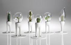 Les plantes humanoïdes de bureau – L'animal de compagnie végétal – Domsai Desk Pet