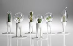Hybrid plant-human virtual pets for your desk. I WANT IT