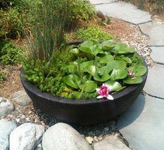 bassin de jardin a faire soi meme