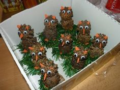 Pine Cones, Kids And Parenting, Advent, Arts And Crafts, Cool Stuff, Christmas, Owls, Monsters, Ideas