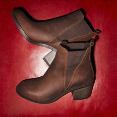 Cilalla Brown Nubuck Women's Ankle boots | ALDO US