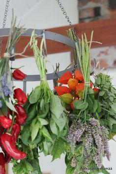 Pikkutalon elämää: Yrtit kuivumassa Harvest Time, Wreaths, Home Decor, Decoration Home, Door Wreaths, Room Decor, Deco Mesh Wreaths, Home Interior Design, Floral Arrangements
