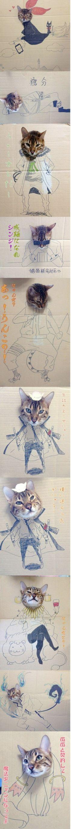 Gatti di cartone