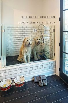 What an awesome idea 🙂 Houzz – Home Design, Decorating and Remodeli… Dog shower! What an awesome idea :] Houzz – Home Design, Decorating and Remodeling Ideas and Inspiration, Kitchen and Bathroom Design Home Design, Design Ideas, Bath Design, Design Trends, Interior Design, Veranda Design, Dog Washing Station, Dog Station, House Ideas