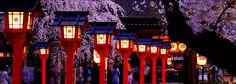 夜の平野神社