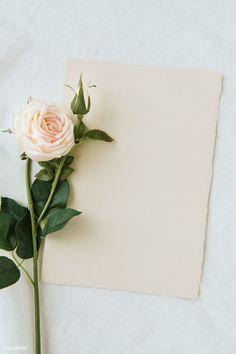 Framed Wallpaper, Flower Background Wallpaper, Flower Phone Wallpaper, Leaf Background, Flower Backgrounds, Wallpaper Backgrounds, Invitation Mockup, Floral Invitation, Invitations