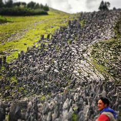 Bosque de piedras en Bambamarca, Cajamarca. ¿Quieres ver más de este destino?…