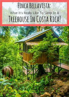 Our experience staying at Finca Bellavista, the world's first sustainable treehouse community!
