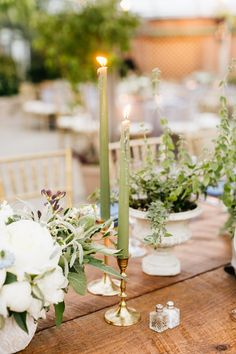 Potted herbs and sage taper candles in brass candlesticks. Grown and designed by Love 'n Fresh Flowers. Photo by Emily Wren Photography.