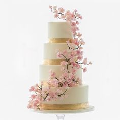 Another cherry blossoms cake and one of our faves 💕🌸! Beautifully captured by Wedding Cake Fresh Flowers, Floral Wedding Cakes, Wedding Cake Designs, Wedding Themes, Quinceanera Cakes, Quinceanera Decorations, Wedding Decorations, Cherry Blossom Party, Cherry Blossoms