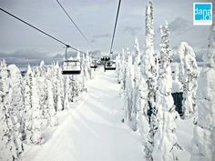 Whitefish, Montana - we are going with the Indianapolis Ski Club this winter - so excited!
