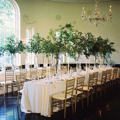 Wedding Table Decorations For Rectangular Tables Centerpieces - love the long rectangle tables at a wedding instead of round with Greenery Centerpiece, Tree Centerpieces, Wedding Table Decorations, Decoration Table, Rectangle Table Centerpieces, Flowerless Centerpieces, Tree Centrepiece Wedding, Tall Wedding Centerpieces, Centrepieces