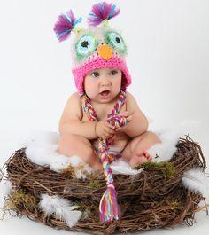 Owl baby in nest