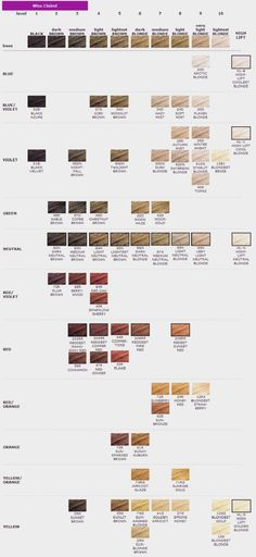25 Best Clairol Hair Color Images Clairol Hair Color Hair