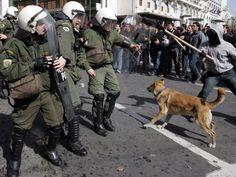 El ladrido de Lukánikos, el perro anarquista - ANTENA 3 TV