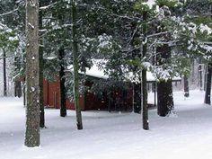 Winter beauty at Kishawau Country Cabins, 901N 2129 Road • Tonica •   (815) 442-8453