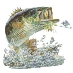 Skiff Life Buzz Off Bass Fishing Decal Sticker Randy McGovern Art - Skiff Life - We Fish Skinny Water! - 1
