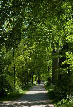 Een groene oase in het centrum van de stad: park 't Hof heeft kronkelige paden, monumentale bomen, een mooi bloemencarré bij de ingang aan de Hoflaan en de dierenweide, die door bewoners beheerd wordt. Het Oranjepark heeft strak gebogen waterpartijen, slingerende verharde paden en ruime gazons.