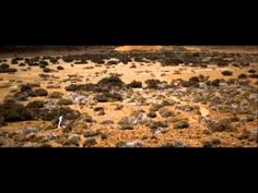 Pendulum - 'The Island - Pt. 1 Dawn'