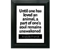 LINOCUT PRINT - Anatole France Quote - Until one has loved an animal, a part of one's soul remains unawakened - Pet quote 8x10