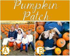 Fall-Photo-location-PUMPKIN-PATCH-cropped.jpg (500×402)