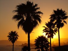 Pismo beach heh heh.  Sunset Silhouette, Pismo Beach, California  photo by douglasevans