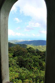 Entdecken Sie die Welt mit Ihrer Rodenstock Sonnenbrille, z.B. bei einer Fahrt in den Nationalen Regenwald El Yunque in Puerto Rico. Nutzen Sie diese Reisetipps für ein tolles Abenteuer.
