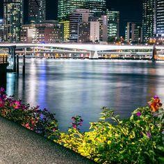 Jeez Brisbane, you clean up alright. #thisisqueensland by @artistrobd