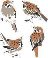 painting birds vector