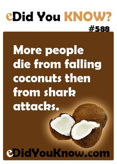 More people die from falling coconuts then from shark attacks. http://edidyouknow.com/did-you-know-588/