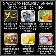 6 ways to naturally relieve mosquito bites. #health #naturalremedies