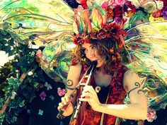 wings beautiful wings