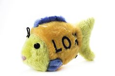 Copa Judaica Chewish Treat 7.5 by 2.75 by 4.5-Inch Lox Fish Squeaker Plush Dog Toy, Large, Multicolor *** Visit the image link more details.